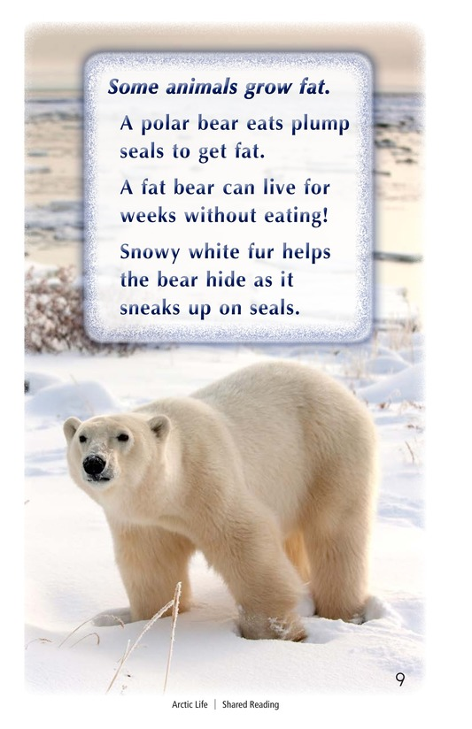 Book Preview For Arctic Life Page 9