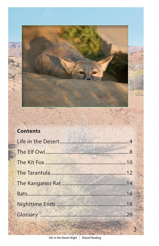 Book Preview For Life in the Desert Night Page 3