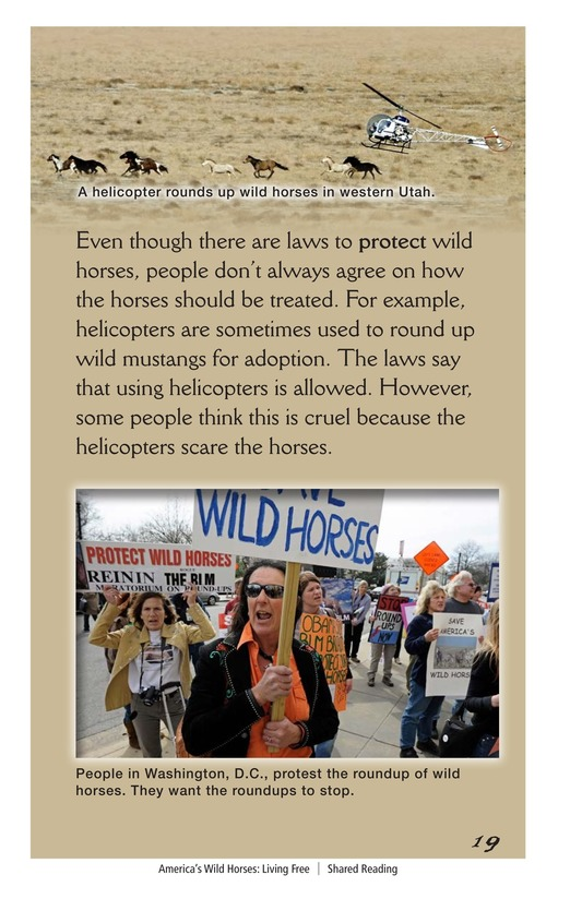 Book Preview For America's Wild Horses: Living Free Page 19