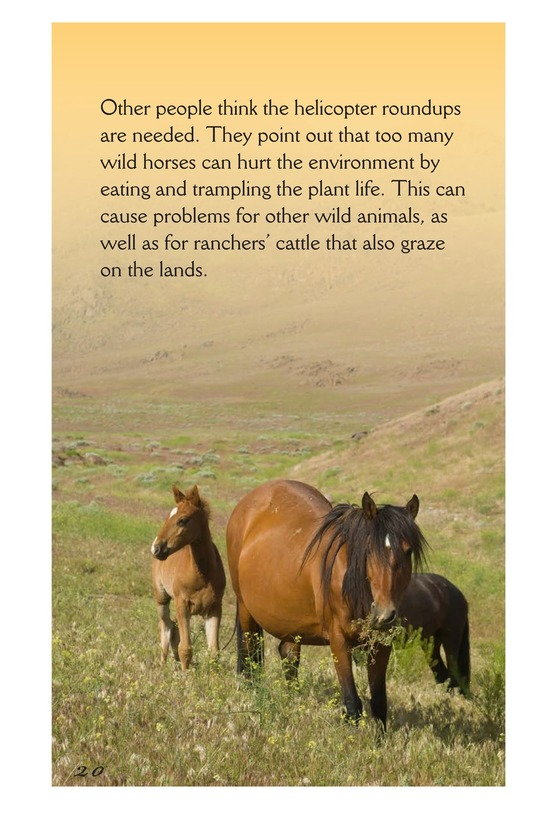 Book Preview For America's Wild Horses: Living Free Page 20