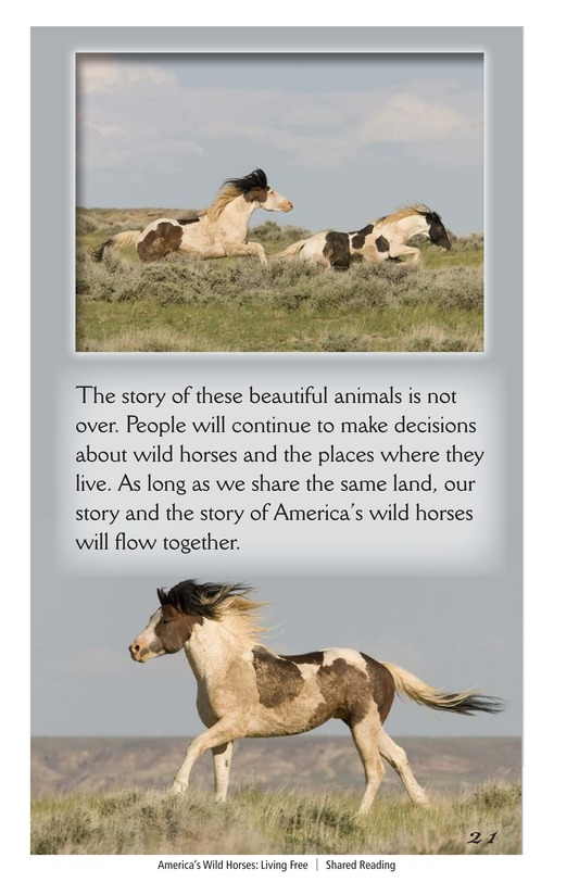 Book Preview For America's Wild Horses: Living Free Page 21