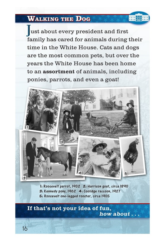 Book Preview For How Do You Have Fun at the White House? Page 16