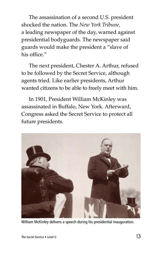 Book Preview For The Secret Service Page 13
