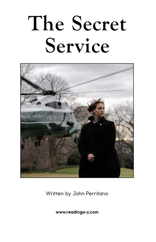 Book Preview For The Secret Service Page 2