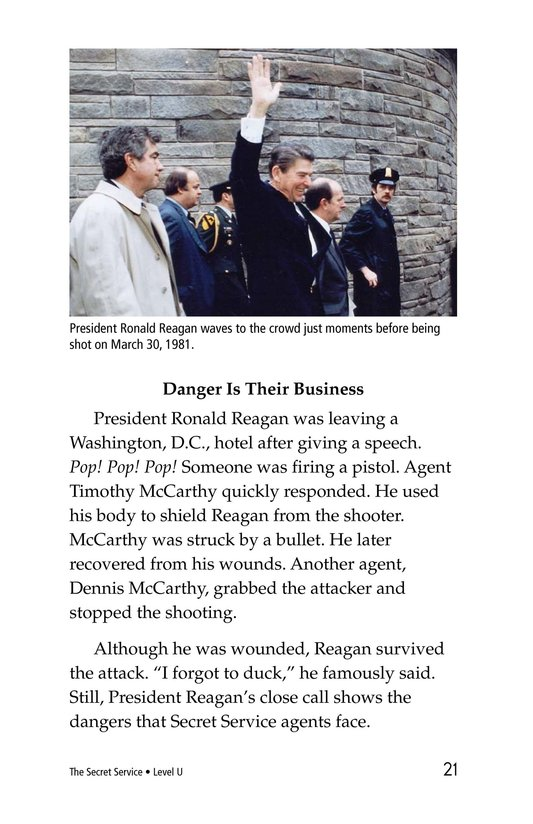 Book Preview For The Secret Service Page 21