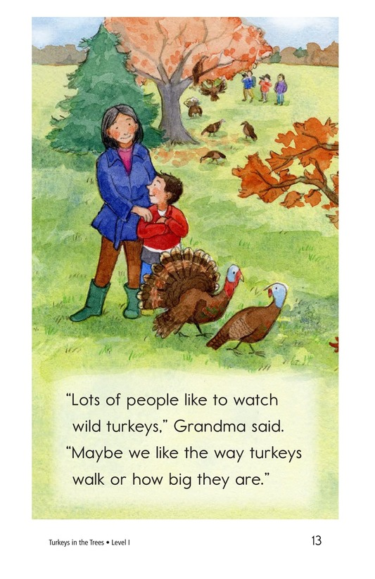 Book Preview For Turkeys in the Trees Page 13