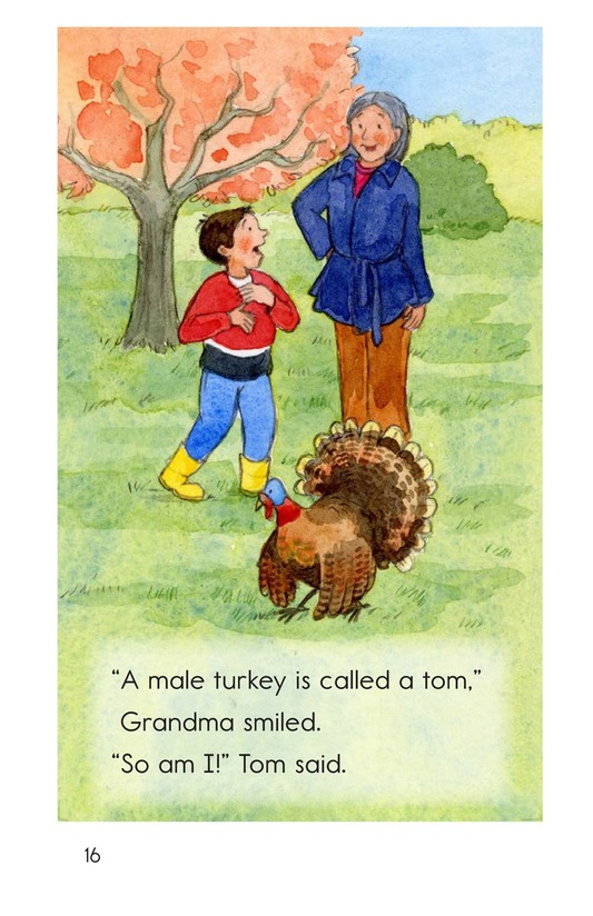 Book Preview For Turkeys in the Trees Page 16