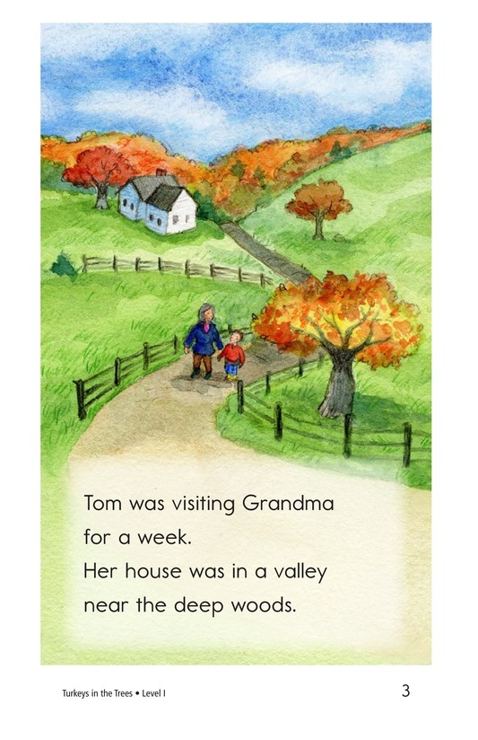 Book Preview For Turkeys in the Trees Page 3
