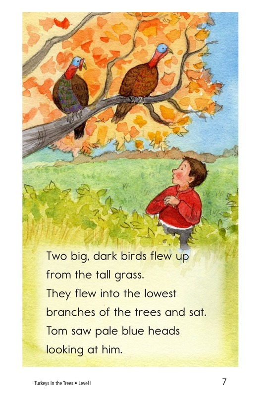Book Preview For Turkeys in the Trees Page 7