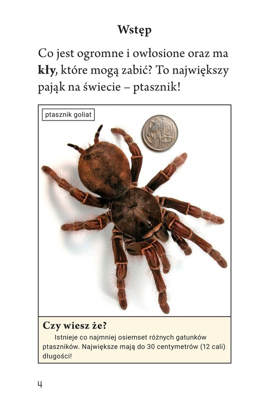 Book Preview For Tarantula! Page 4