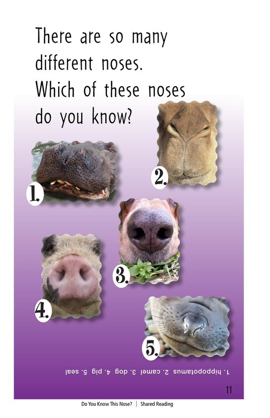 Book Preview For Do You Know This Nose? Page 11