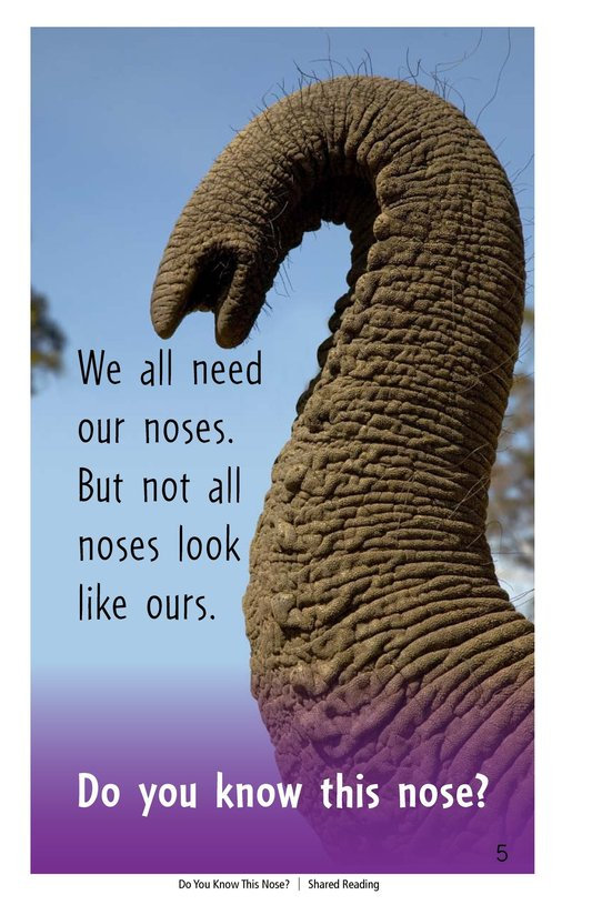 Book Preview For Do You Know This Nose? Page 5