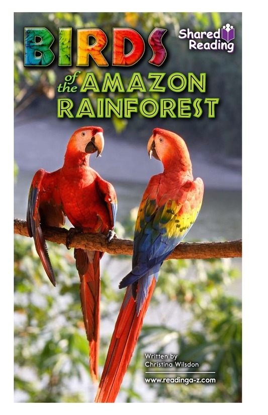 Book Preview For Birds of the Amazon Rainforest Page 1