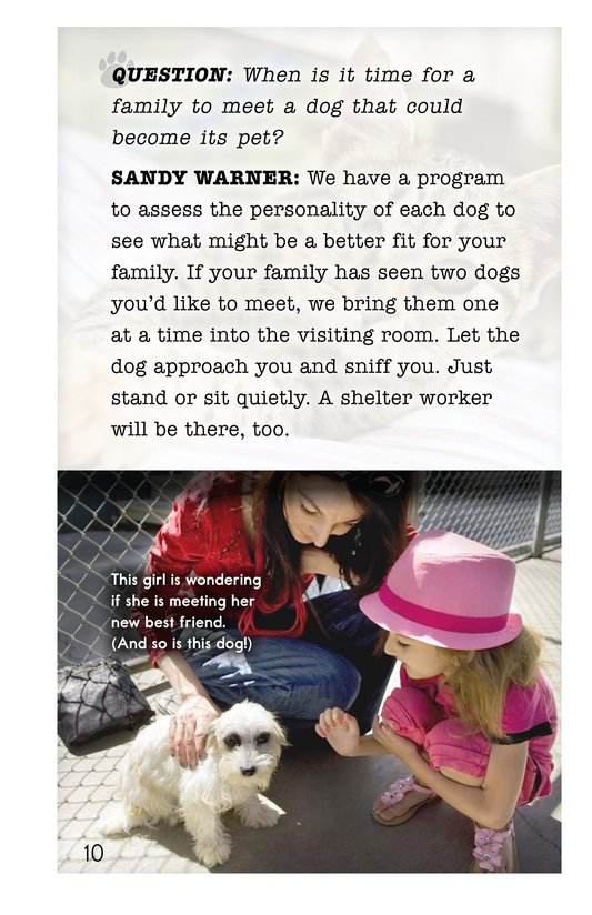 Book Preview For A Pet's Perfect Home Page 10