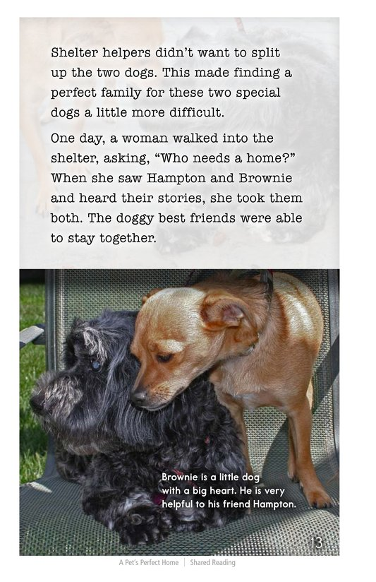 Book Preview For A Pet's Perfect Home Page 13