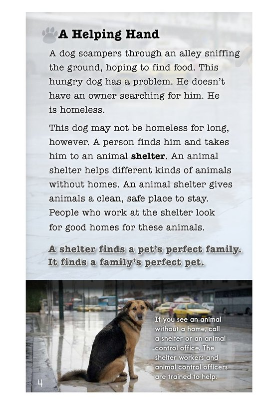 Book Preview For A Pet's Perfect Home Page 4