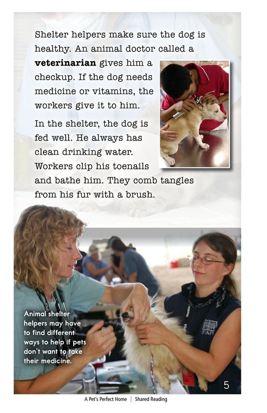 Book Preview For A Pet's Perfect Home Page 5