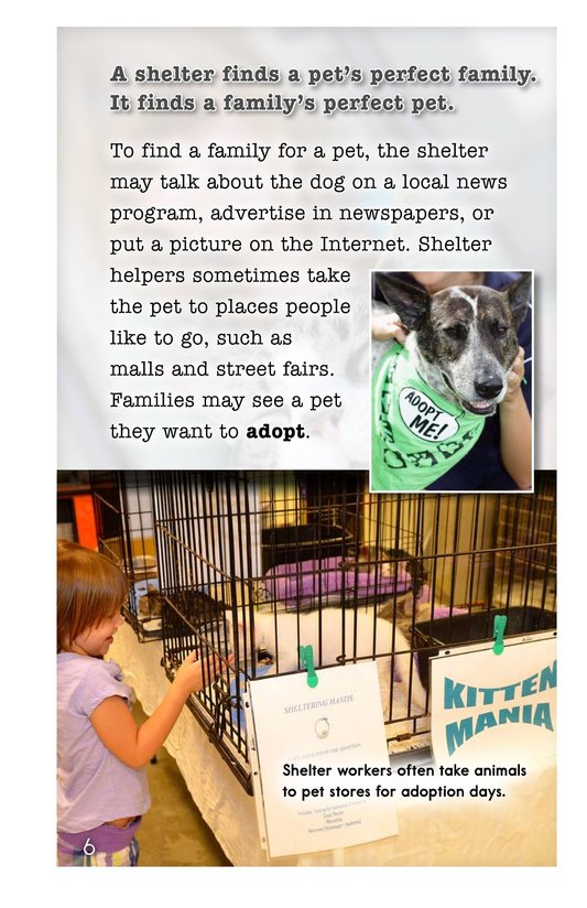 Book Preview For A Pet's Perfect Home Page 6