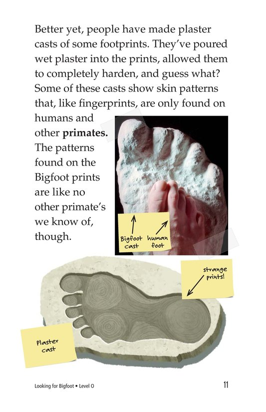 Book Preview For Looking for Bigfoot Page 11