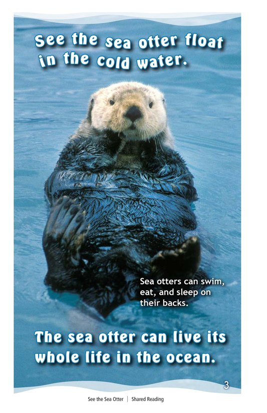 Book Preview For See the Sea Otter Page 3