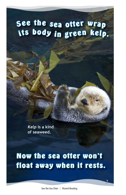 Book Preview For See the Sea Otter Page 7