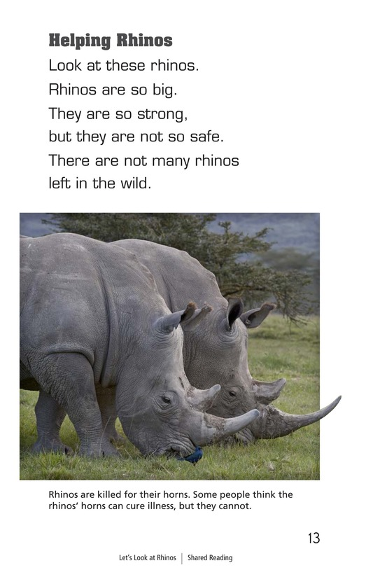 Book Preview For Let's Look at Rhinos Page 13