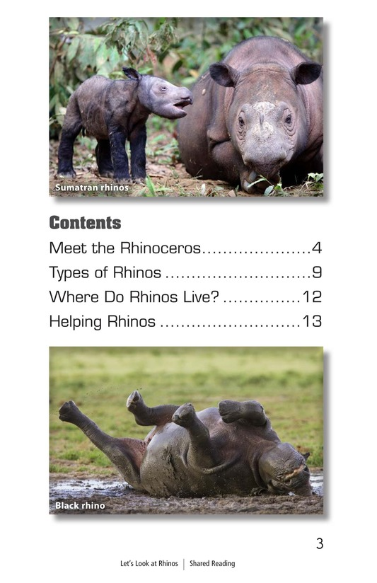 Book Preview For Let's Look at Rhinos Page 3