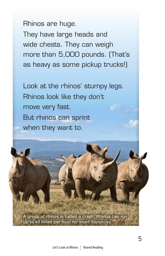 Book Preview For Let's Look at Rhinos Page 5