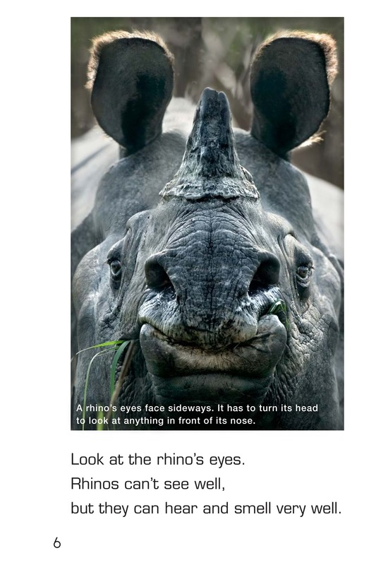 Book Preview For Let's Look at Rhinos Page 6