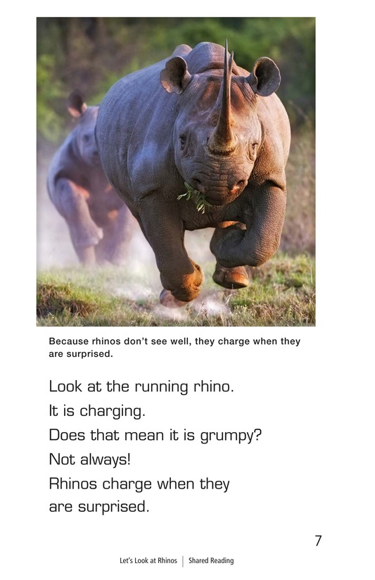Book Preview For Let's Look at Rhinos Page 7
