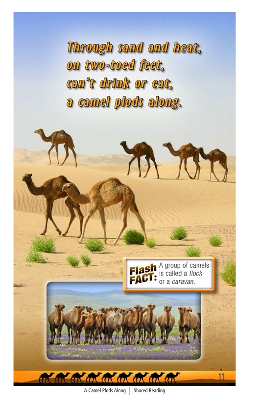 Book Preview For A Camel Plods Along Page 11