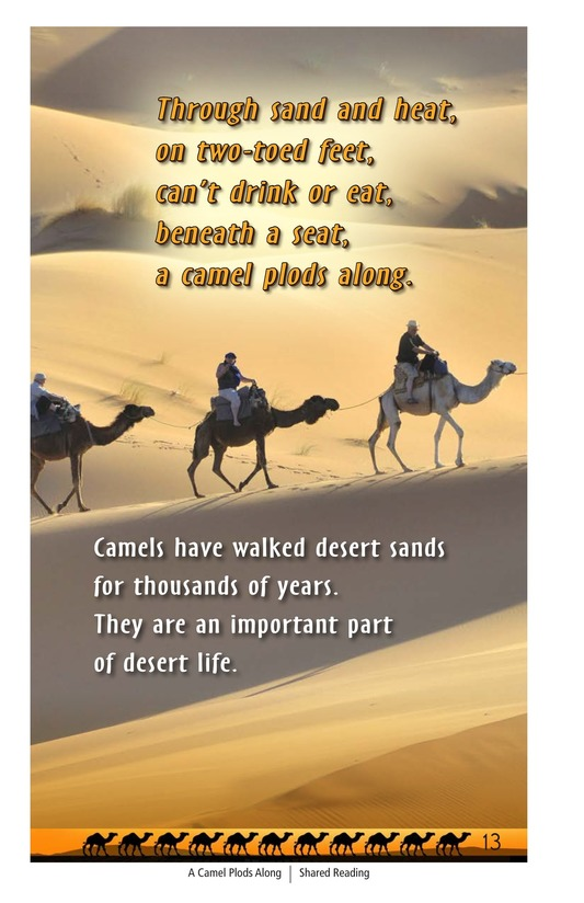 Book Preview For A Camel Plods Along Page 13