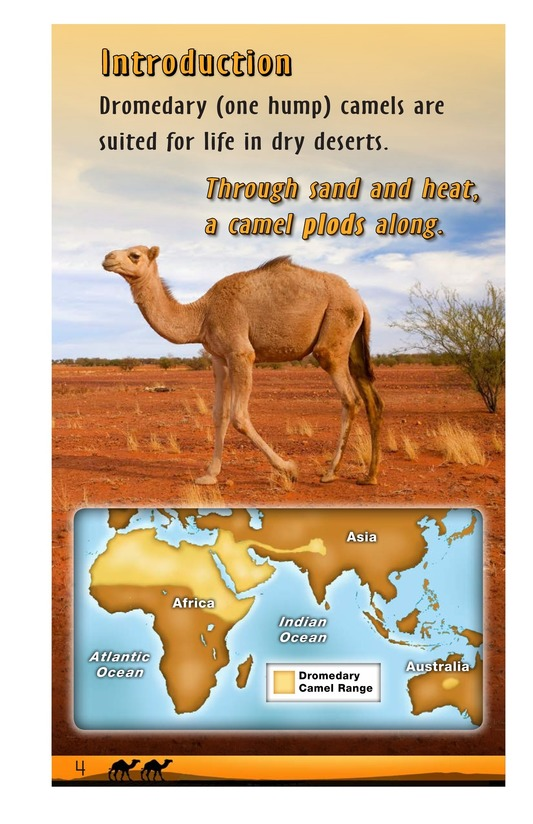 Book Preview For A Camel Plods Along Page 4