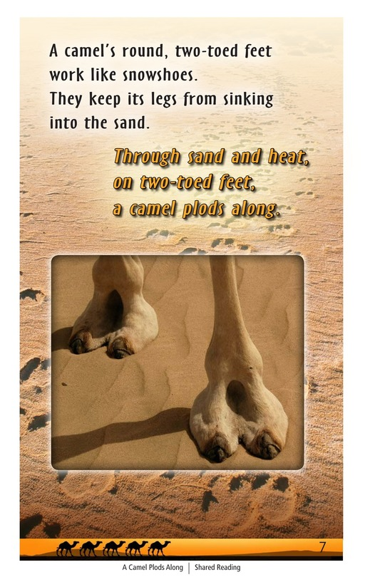 Book Preview For A Camel Plods Along Page 7