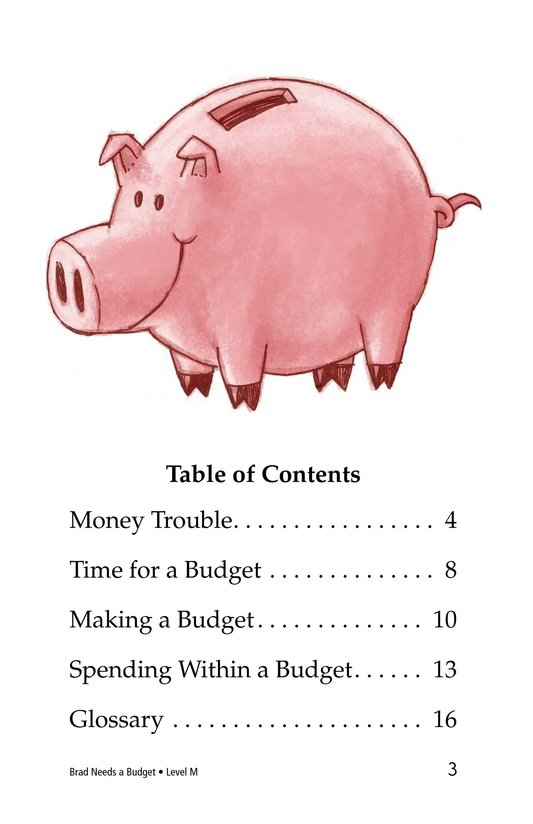 Book Preview For Brad Needs a Budget Page 3
