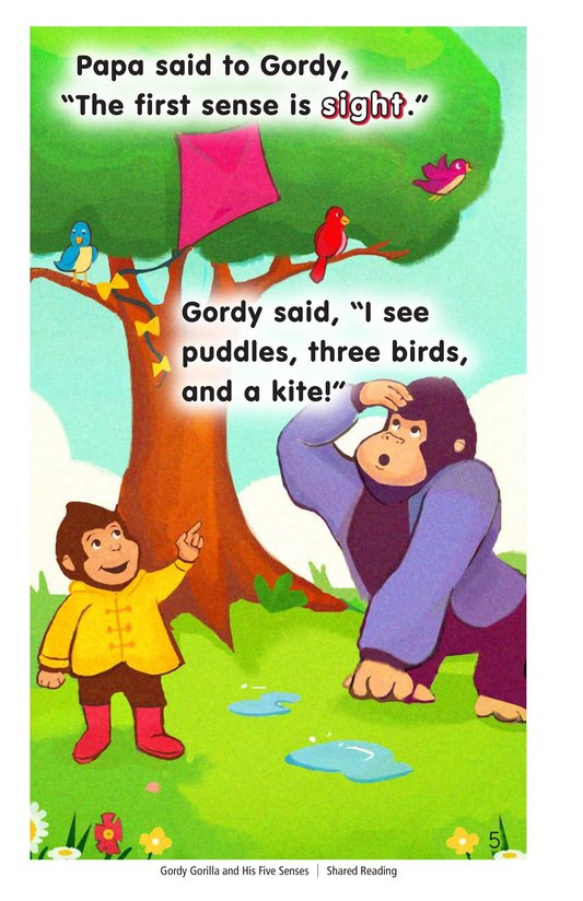 Book Preview For Gordy Gorilla and His Five Senses Page 5