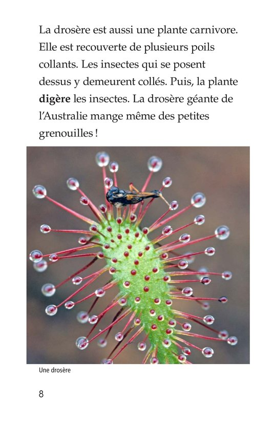 Book Preview For Strange Plants Page 8