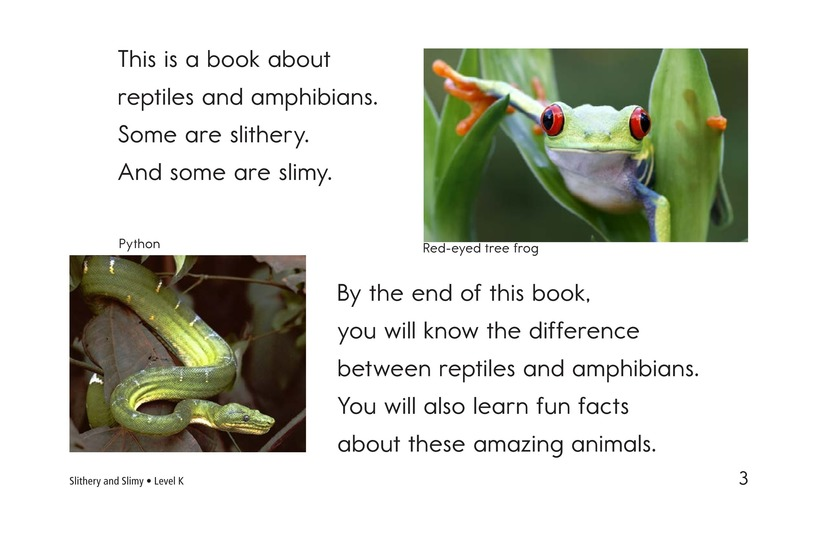 Book Preview For Slithery and Slimy Page 3