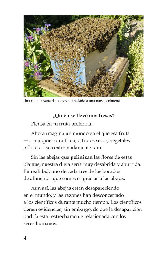 Book Preview For The Case of the Disappearing Honeybees Page 4