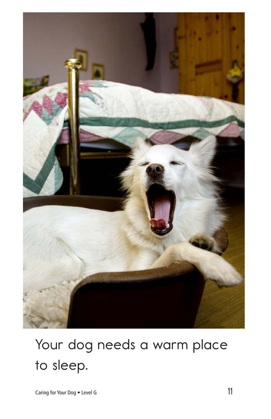 Book Preview For Caring for Your Dog Page 11
