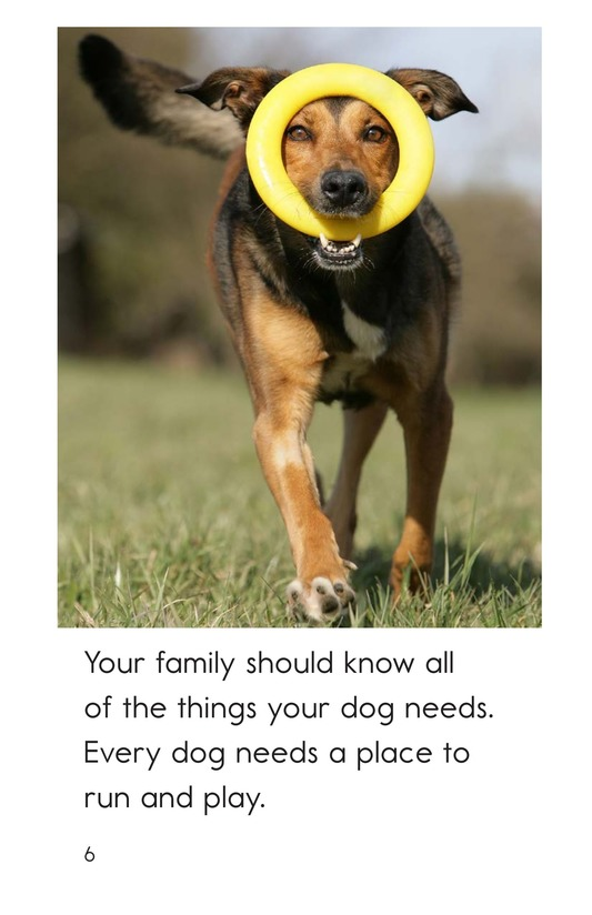 Book Preview For Caring for Your Dog Page 6