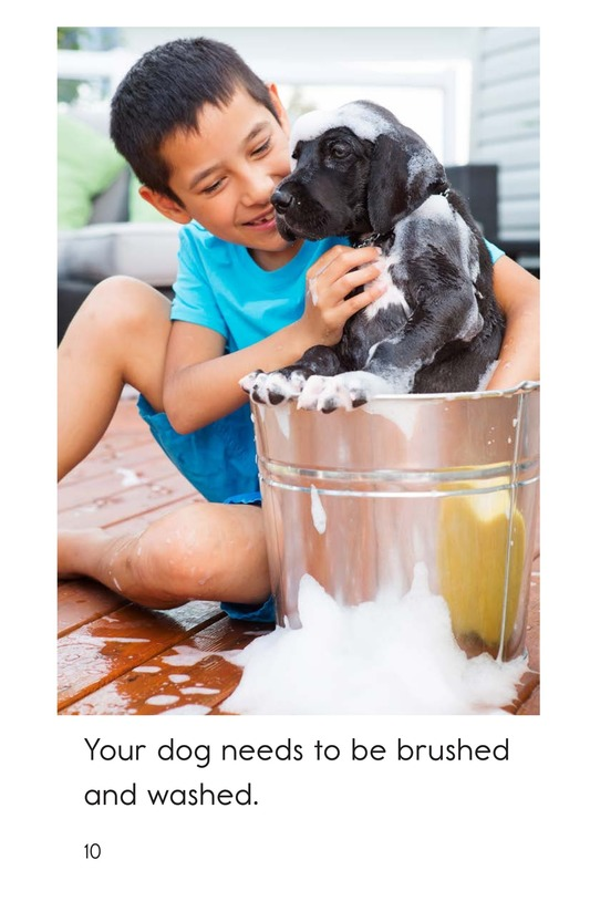 Book Preview For Caring for Your Dog Page 10