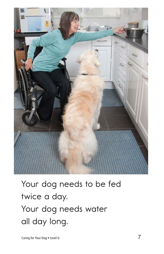 Book Preview For Caring for Your Dog Page 7