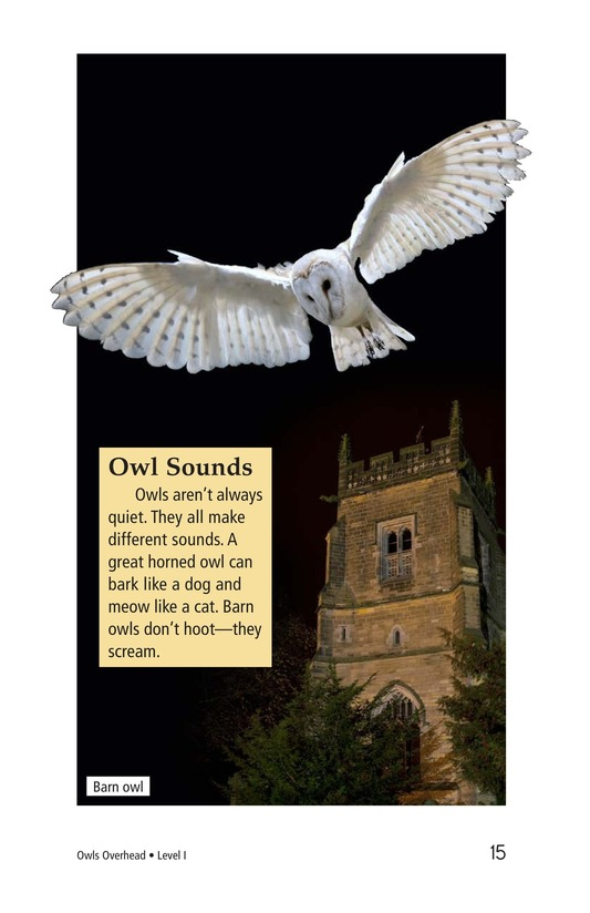 Book Preview For Owls Overhead Page 15