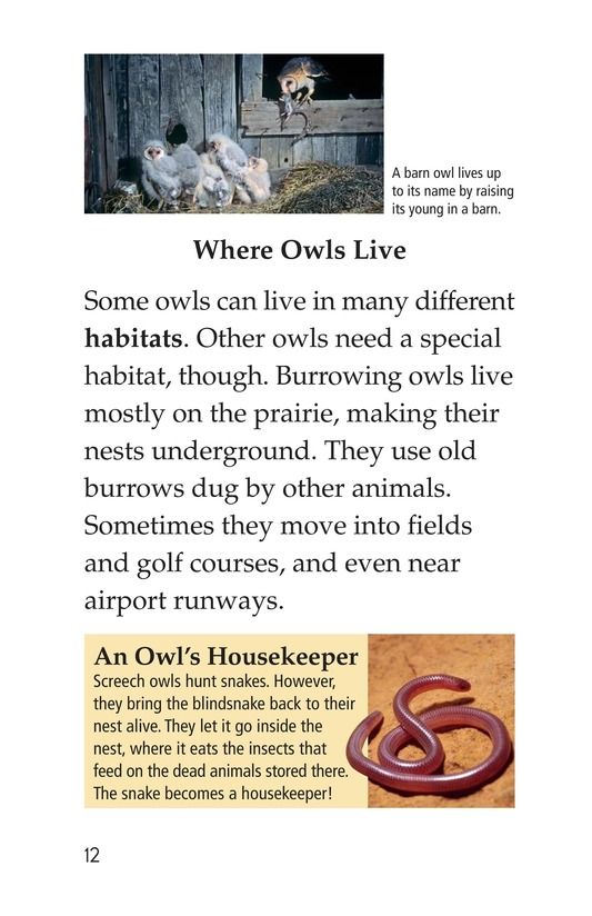 Book Preview For Owls Overhead Page 12