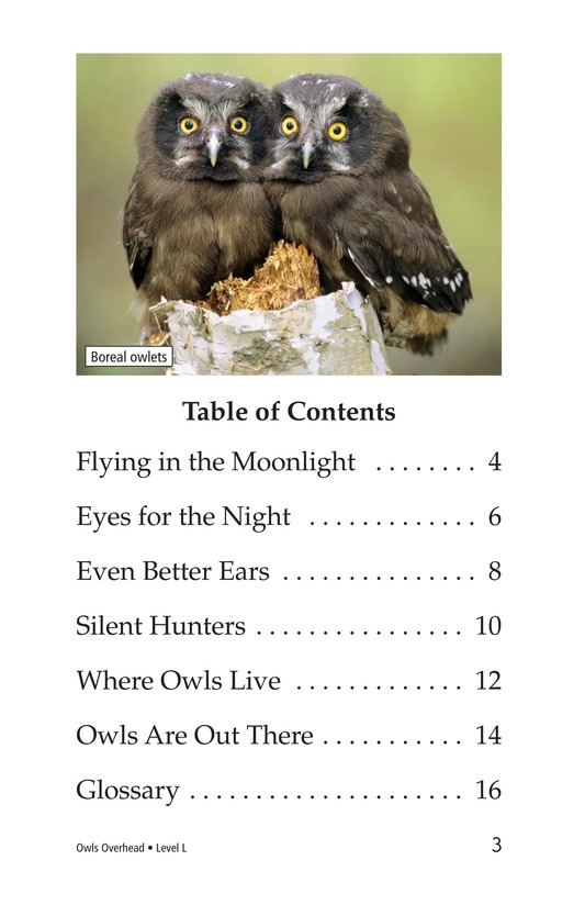 Book Preview For Owls Overhead Page 3