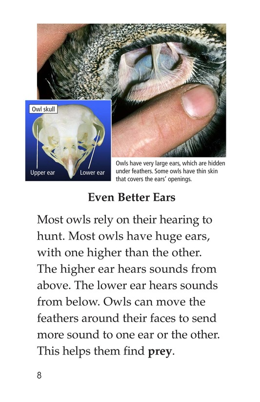 Book Preview For Owls Overhead Page 8