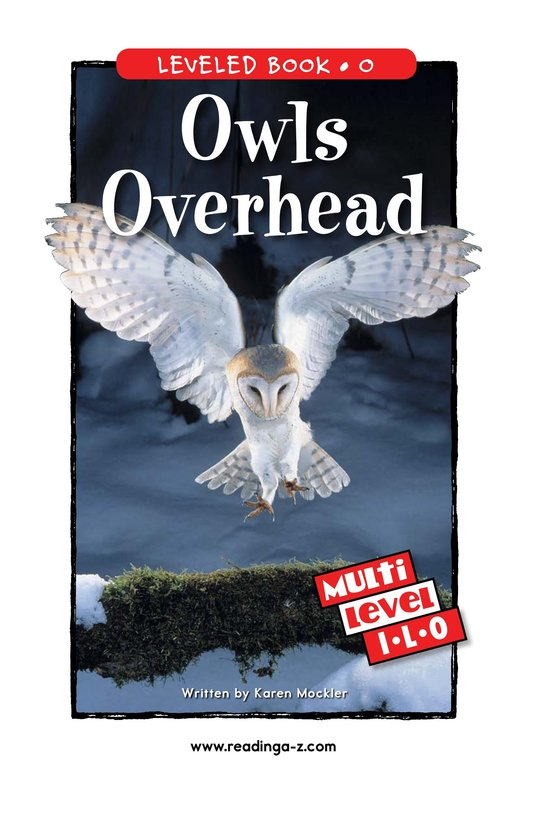 Book Preview For Owls Overhead Page 1