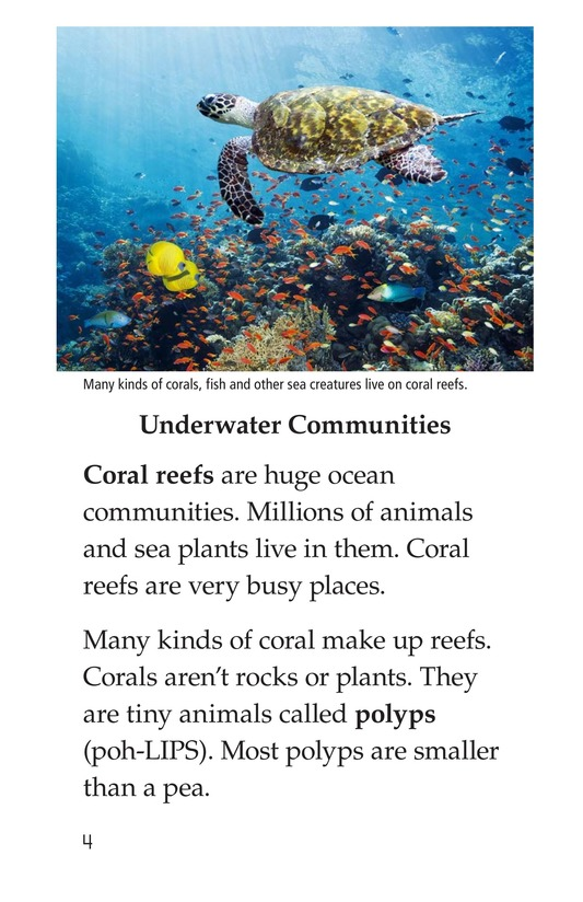Book Preview For Coral Reefs Page 4
