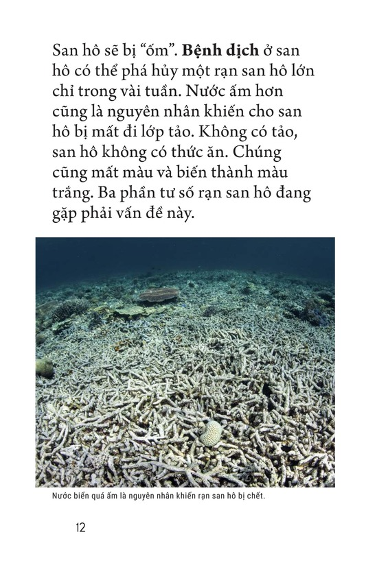 Book Preview For Coral Reefs Page 12